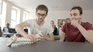 Alles voll im Griff: Die #Physiotherapie-Ausbildung | Ludwig Fresenius Schulen