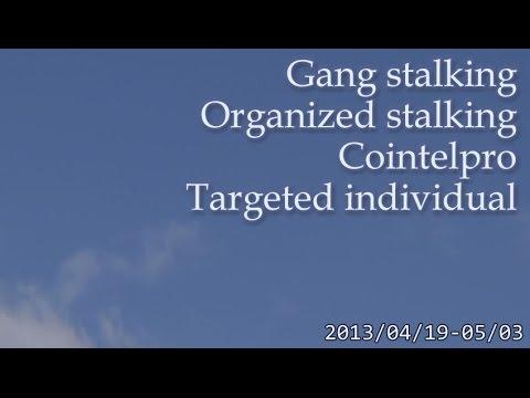 空を撮影していると始まるノイズキャンペーン 2013.04.19~5.3 Gang Stalking Cointelpro Targeted Individuals