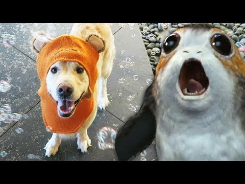 PUPPY PORG MELTDOWN! - Star Wars The Last Jedi (Super Cooper Sunday #123)