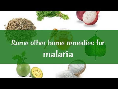 Some other home remedies for malaria - Onlymyhealth.com