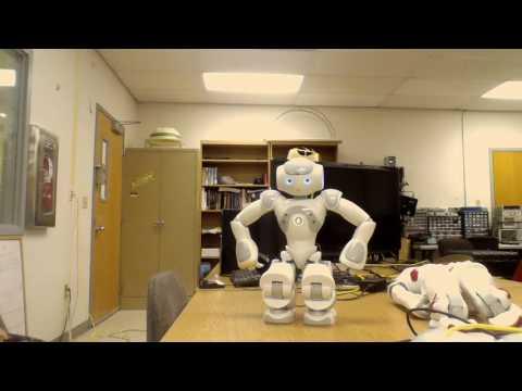 Nao Robot Does Tai Chi Chau in Moonlight Sonata