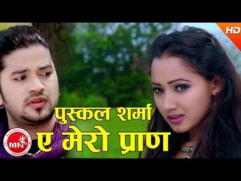 New Nepali Lok Dohori | Ya Mero Pran - Puskal Sharma & Jamuna Sherpali Ft. Asha Khadka & Alok Diwang