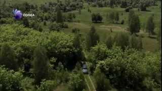 Chernóbil,la naturaleza se regenera