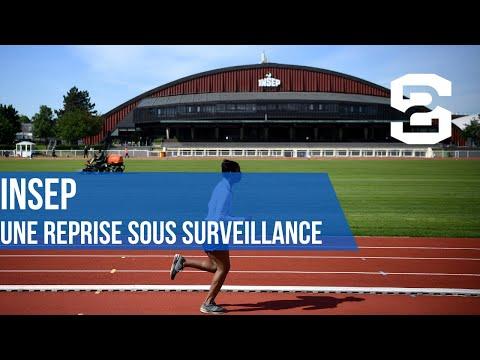 INSEP- Une Reprise Sous Surveillance