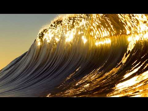 ADULTSWIM BUMP - GOLDEN WAVES