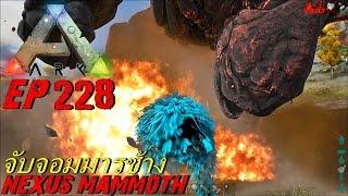bgz ark survival evolved ep 228 จ บจอมมารช างเเมมมอท nexus mammoth