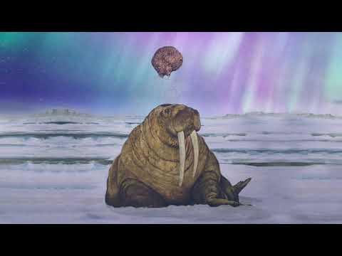Tanya Tagaq - Icebreaker Mp3