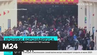 В России не обнаружили новых случаев инфицирования коронавирусом - Москва 24