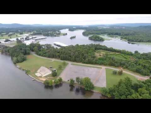 Beautiful Goose Pond Colony