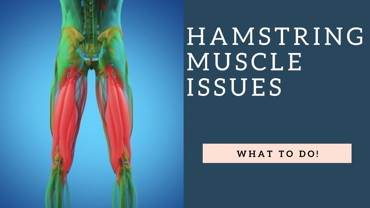 STOP Hamstring Stretches & Strengthen These Muscles Instead To ...
