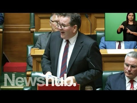 Full video: Finance Minister Grant Robertson announces the 2019 Budget in Parliament | Newshub