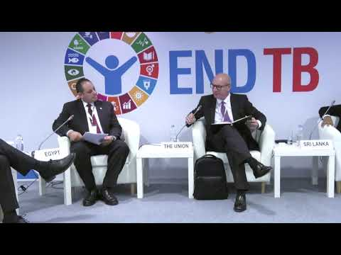 Synergies across Responses to TB and NCDS I - WHO Global Ministerial Conference on Ending TB