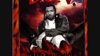 B.O.V. - Your Own Risk