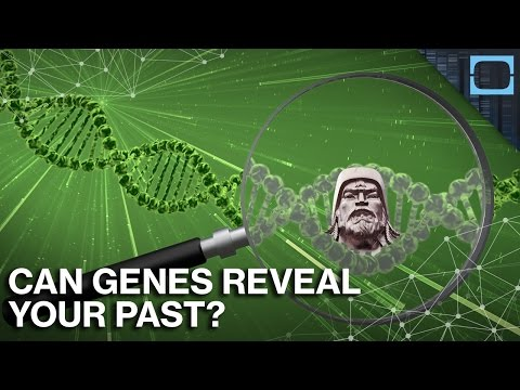 Are You Related To Genghis Khan?