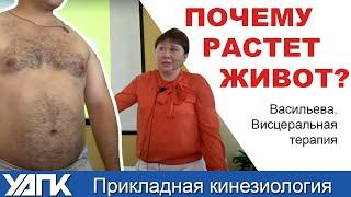 Лечим Внутренние органы. Висцеральная терапия от Васильевой