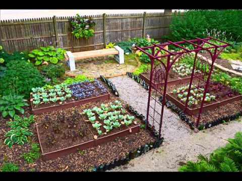 Lovely Vegetable Garden Design I Vegetable Garden Small Backyard   YouTube