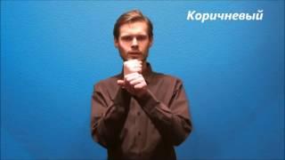 Русский жестовый язык. Урок 11. Цвета