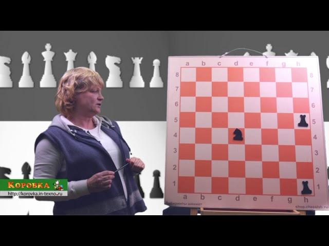 Демонстрационный урок по Шахматам. Ладья