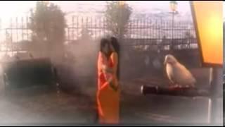 chiranjeevi touched the actress radha ass in subhaleka raskunna song