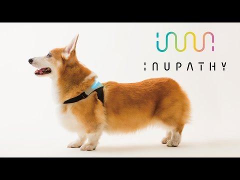 愛犬のキモチによりそう共感デバイス「INUPATHY」