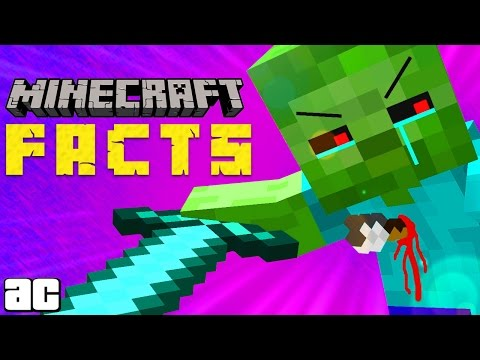 15 Minecraft Facts You DIDN'T KNOW! | @ArcadeCloud