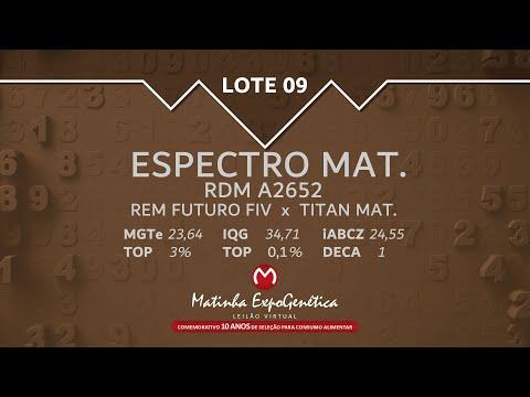 LOTE 09 MATINHA EXPOGENÉTICA 2021