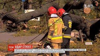 Одразу шість регіонів Польщі потерпають від сильних вітрів