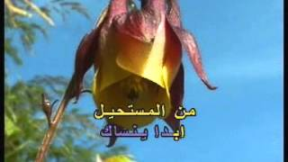Arabic Karaoke: Abed El Halim Hafez Ya 7elou Ya Asmar