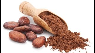 Raw Cacao & The Cacao Health Benefits
