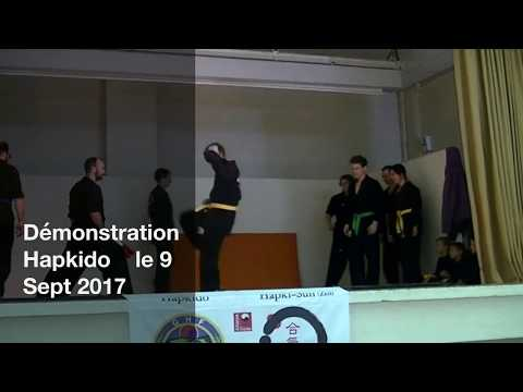 2017 09 09 Démo Global Hapkido Toulouse