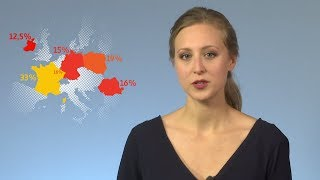 Steuerparadies Europa – Wie Apple und Co. Steuern sparen | ARTE Journal