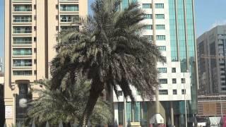 На экскурсии по Абу Даби. ОАЭ.(, 2013-02-26T09:13:59.000Z)