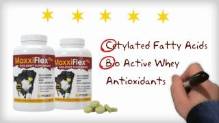 The Active Ingredients In The Best Joint Supplement For Dogs - MaxxiFlex Plus