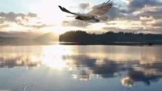 Where the Eagle flies