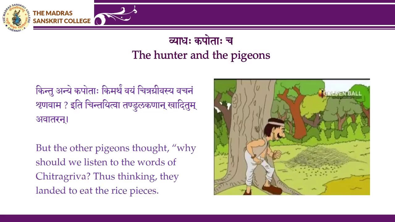 Panchatantra Tales in Sanskrit - The hunter and the pigeons