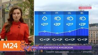 Фото AndquotУтроandquot в Москве объявлен желтый уровень погодной опасности - Москва 24