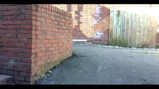 reece gunning:street edit