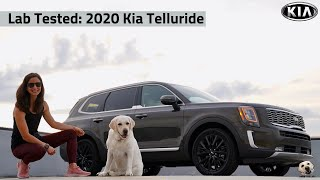 2020 Kia Telluride: Andie the Lab Review!