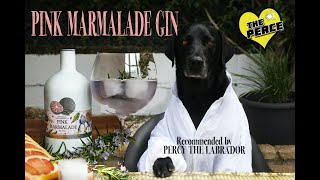 Our Dog Percy the Black Labradors friend makes Pink Marmalade Gin