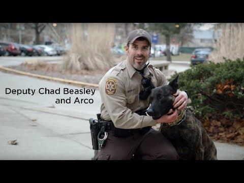 Training Video on Reversing Opioid Overdose in Dogs - Illinois Vet Med