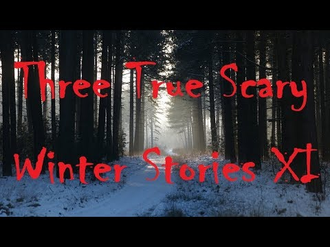 Three True Scary Winter Stories XI