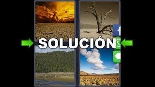 4 Fotos 1 Palabra Desierto Arbol Seco Playa Tierra Seca Enigma
