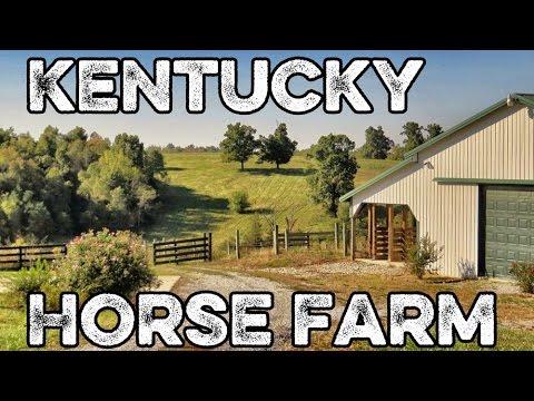 Springfield Kentucky Horse Farm For Sale Johnson Rd Farm