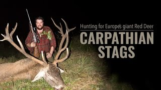Carpathian Stags(Watch the film on Europes best streaming channel for hunters. www.huntersvideo.com, Join now, and get the first 14 days free after registration. You can cancel ..., 2016-09-20T15:02:04.000Z)