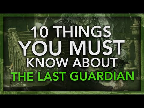 The Last Guardian - 10 Things You Must Know