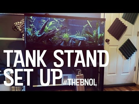 Moving my 55g aquarium - Petco Brooklyn Stand - Bear Necessities