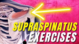 13 Supraspinatus Rotator Cuff Tear Stretches & Exercises (beginner To Advanced)