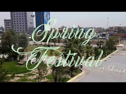 2nd Annual Spring Festival | College of Pharmacy