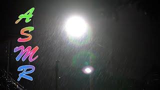 가로등 불빛 아래 내리는 빗소리 - ASMR #80