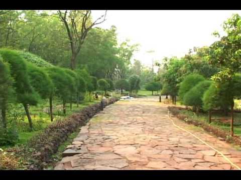 Great Asha Ki Kiran (EP 15) Tata Steel Zoological Park U0026 Sir Dorabji Tata  Botanical Garden